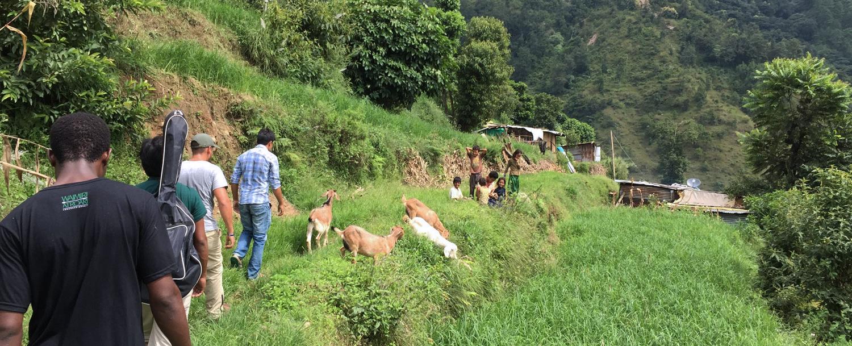 Nepal: na fronteira entre a destruição e a esperança