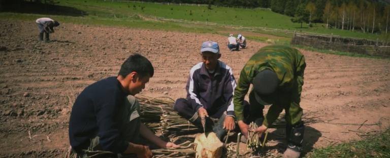 Ásia Central: Essa é a Igreja Sofredora