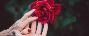 O mistério do amor: surpreendidos pela graça de Deus