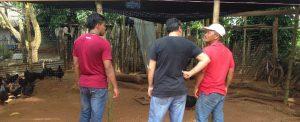 Colômbia: esperança renovada
